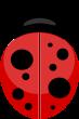 ladybird-transparent-background